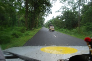 Speeding across the Mahananda Wildlife Sanctuary